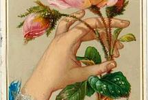květinové přáníčka