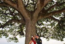 Honolulu Wedding Photography