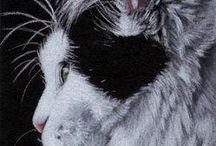 Cat art / Cats by Sandrine Curtiss