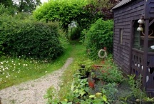 My Home / Welcome to Bealtaine Cottage. You can also visit Bealtaine Cottage on Wordpress, YouTube and Etsy. The home of permaculture in the west of Ireland...9 years a-growing!