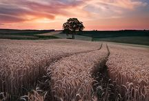 Germany Landscapes