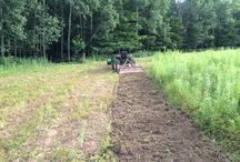 Food Plot Photos / Let's see those PA food plots!
