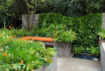 RHS Chelsea Flower Show 2012 - APCO artisan garden, Silver Medal