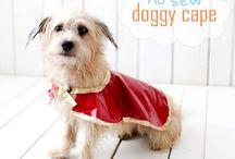 Rosie xx  / Anything doggy!!