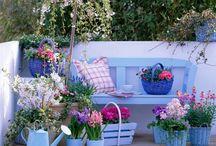 κήπος ♡