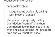 Muggleborns rule