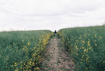 UK Travel Spots / by Courtenay Jones