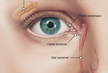 El síndrome de Gougerot-Sjogren