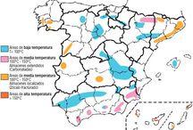 INDEREN geotermia