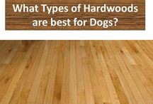 Pets and Hardwood Floor Care