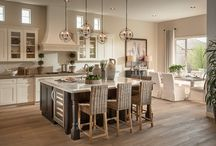 Kitchen and Family Room Design