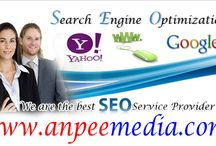 Social Media for Business - Video Search Engine Optimization - Search Engine Optimization Services / If you want to target an online market for your business, make sure you can use a search engine optimization services strategy. Get video search engine optimization services from Anpee Media SEO Company for maximizing your online visibility with the assistance of SEO experts.