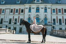 FiveFouleEquestrianFashion / Equestrian's Fashion