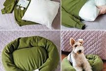 DIY Pets / Why not treat your best friend to a stylish bed?  Here are some times on how to make everyday items for your pets.