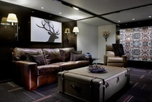 Man Caves and Interiors / by Terence-Jaiden Wray