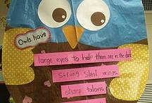 Owls...Whooo Knew? / My classroom is an OWL theme and I have found the cutest things...