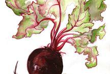 Legumes, vegetais, frutas e oleaginosas. / Alimento é vida !!