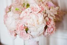 Ricks Nugent Wedding / by Tiffany Ball