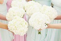 CANDY PASTEL WEDDINGS