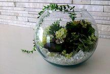 設計事務所Atelier CoCo / 設計事務所アトリエココの施工・デザイン作品です。