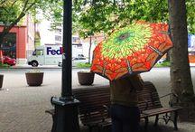 Umbrellas / by Sonia Colon