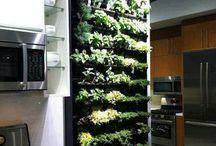 Herbs garden ideas