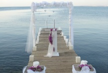 Wedding Venues / by Mollie Gambill