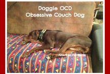 Dog Humor / #dog #humor Original dog humor for your enjoyment.  / by PetCraftStore.com