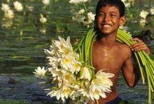 happy lotus child