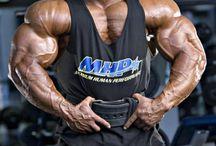 Best bodybuilders