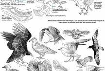 digital zwierzęta