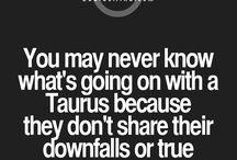 the bull / something about taurus that i can relate to myself