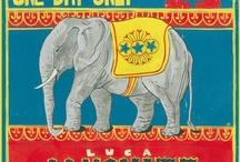 One Day Only,Nov 23 / One Day Only,Nov 23 è l'album d'esordio di Luca Janovitz dentro la gallery copertina ed elementi del booklet realizzati dall'artista e illustratrice Olimpia Benini