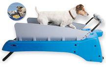 My Pet Dreamboard