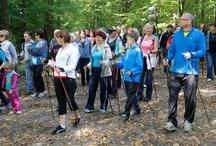 Niebieski szlak w Zielonym Lesie w Żarach / Cieszymy się, że mogliśmy dopomóc w jego przygotowaniu :)