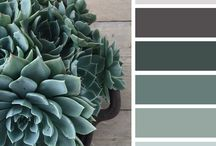 { succulents } / by design seeds