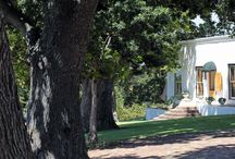 """Hope Cottage / I didn't think I believed in love at first sight until I saw"""" The Hope Cottage"""" in Klein Constantia. It is approached by old whitewashed pillars and large wooden gates. Driving up a long paved tree lined driveway. I knew I was onto something special. It was love at first sight!  """"The Hope Cottage"""" is part of a homestead built in 1847. Nestled amongst the Groot Constantia Vineyards it is a dream come true. Such peace and tranquillity so close to the city and the hub of Constantia."""