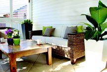Perfect Pots / Look no further if you want to add a little something extra to your outdoor, or indoor, area!