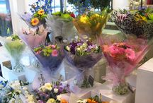 Flower Shop / Photos in around our shop of all our lovely flowers and plants