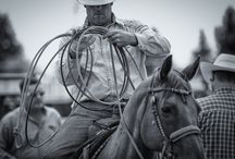 Stampede Week / West Coast Amusements, Rodeos, Trade Shows, Night Shows, Queen & Princess Competition...and so much more. Visit www.mhstampede.com for more information
