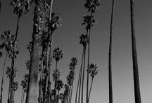 Santa Barbara Parks / by Parks and Recreation, City of Santa Barbara