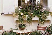 gardening terrace