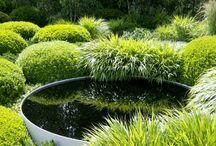 reflection pools