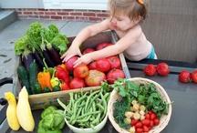 Yummy Organics