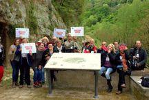 Invasione Digitale 2015  InvadiamoilmuseoManzi a Pitigliano