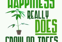 ☺Happiness☺ / Pleasure, joy, exhilaration, bliss, contentedness, delight, enjoyment, how many names there are for happiness. Marijuana helps me to experience it each and every second of the day.