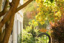Gardening: Entrances