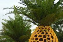 Rare Plants