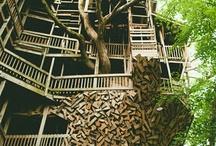 Treehouses / by Debbi Lake