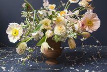 Nyári virágok / szinesek